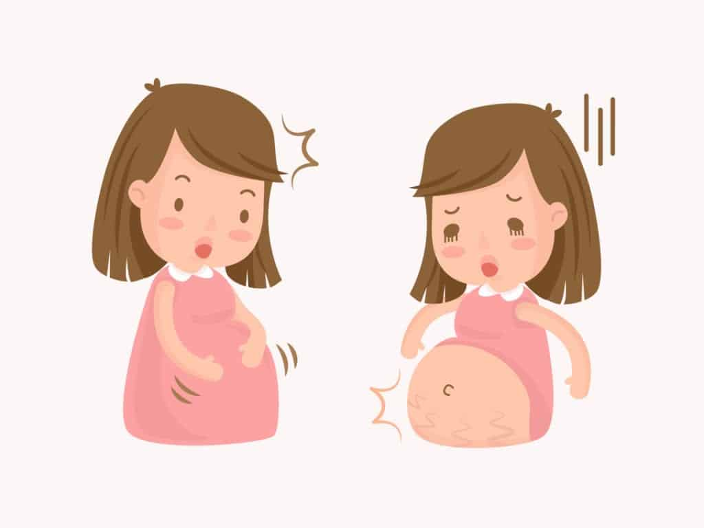 second trimester - information